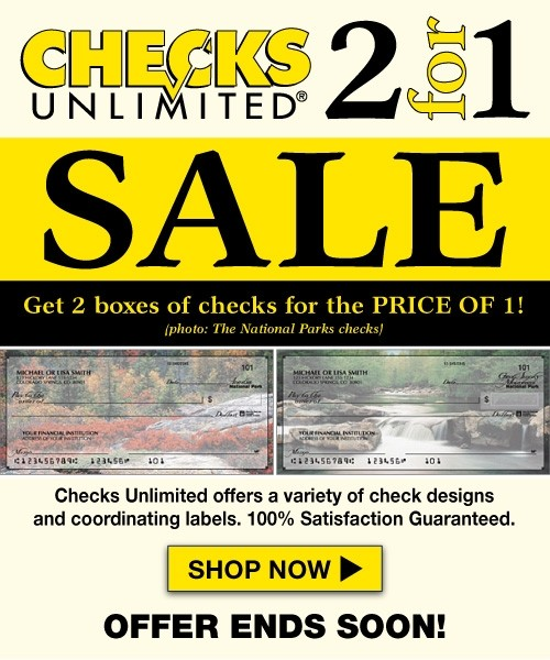 Deluxe Checks 500x600 web advertisement