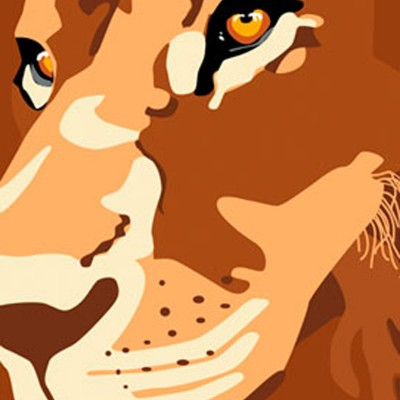Close up illustrated lions face