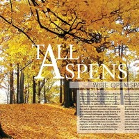 Tall Aspen Magazine Ad makeover 1